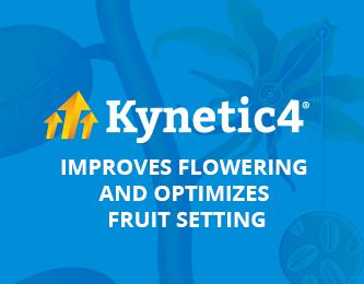 Improves flowering and optimizes fruit setting