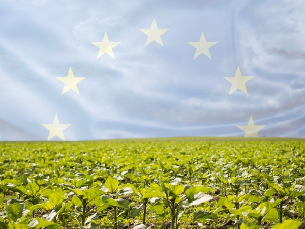 Circular Economy and Agriculture in the European Green Deal