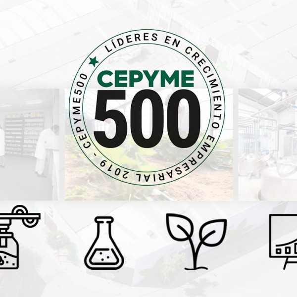 Seipasa is among Spain's 500 leading companies by CEPYME